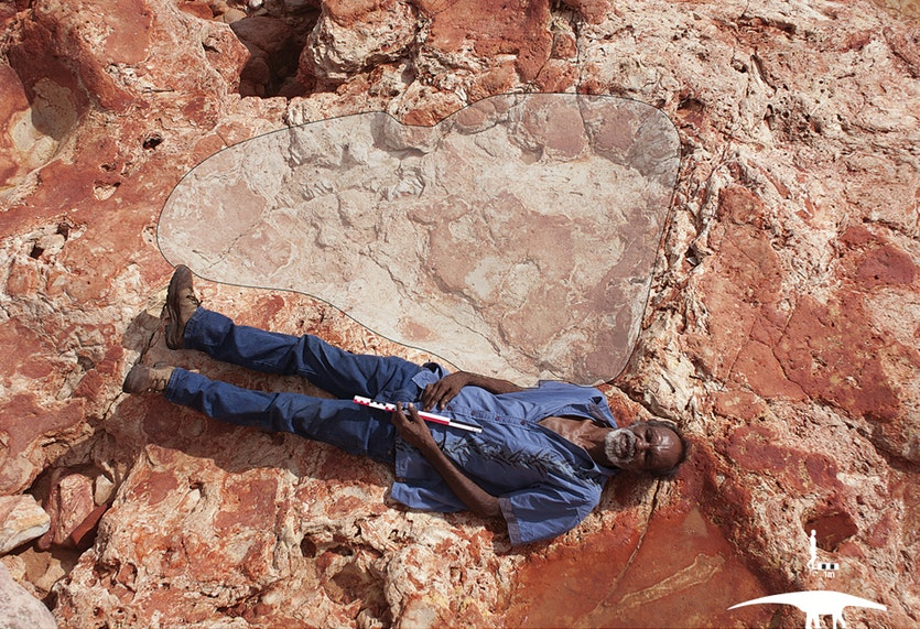 Goolarabooloo elder Richard Hunter with a 1.75-metre footprint of a giant sauropod, a plant-eating 'lizard-footed' quadruped with a long tail and neck. Scientists have identified six different types of sauropod prints in the rock.