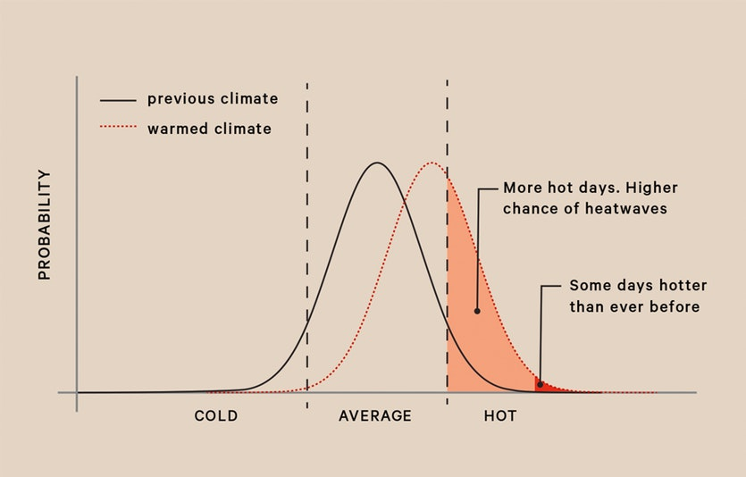 Graph showing the increase in the probability of hot days caused by a small increase in average temperature.