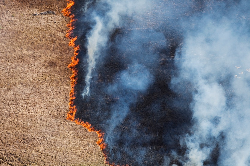 An aerial view of a grassfire.