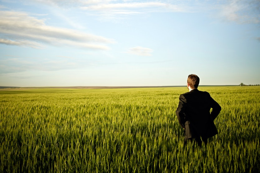A businessman gazing out on a wheatfield and blue sky.