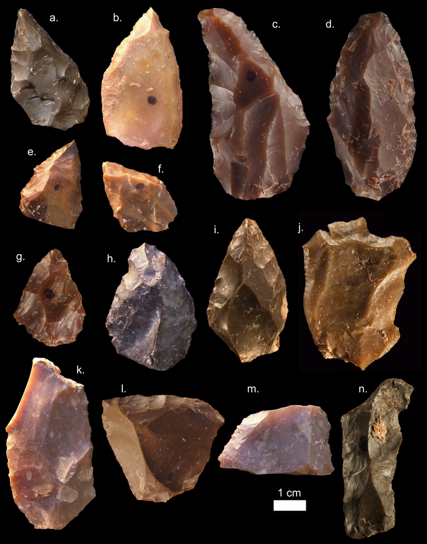 Some of the Middle Stone Age stone tools from Jebel Irhoud.