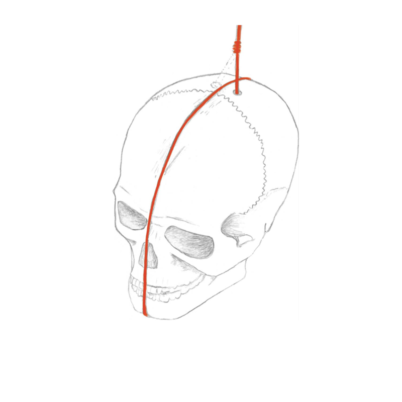 A sketched reconstruction of one of the skills, showing the drilled perforation at the top of the cranium used to suspend the skull with a cord (red) and carvings used to prevent the cord from slipping.