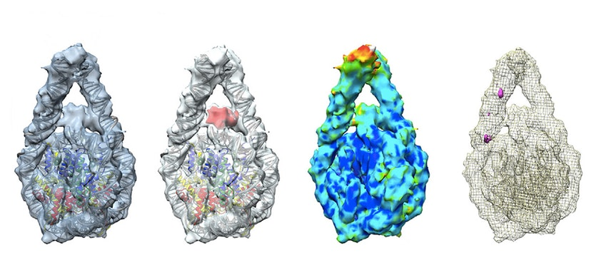 Several views of a 3-dimensional computer model of dna packing in a nucleosome.