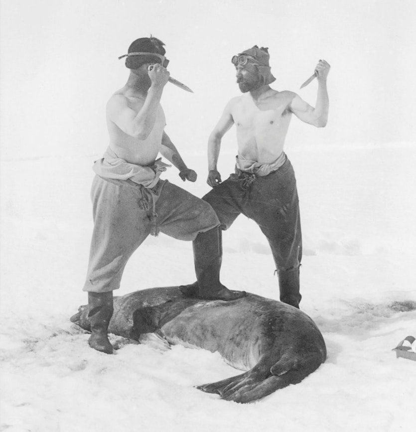 Frank Wild and M. H. Moyes, members of the Shackleton expedition of 1911–14, pose after killing a Weddell seal.