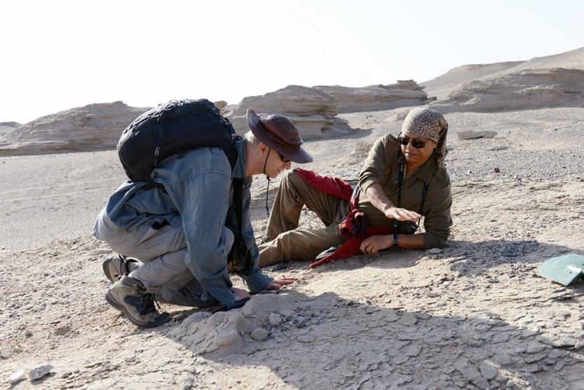 Palaeontologists Alexander Kellner and Xiaolin Wang.