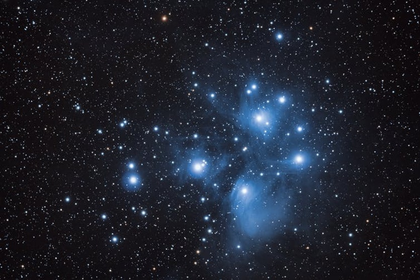 The most luminous stars in the Pleiades star cluster are blue.