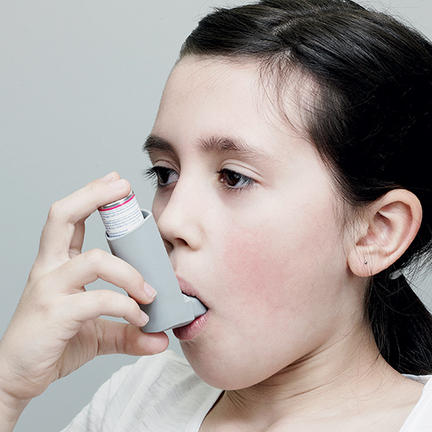 The four bugs that protect us from asthma - Cosmos Magazine