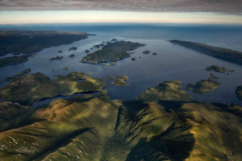 Anchor Island in Fiordland National Park is one of a growing number of places in New Zealand that are predator-free. Scientists have established a kakapo breeding program in this safe haven.