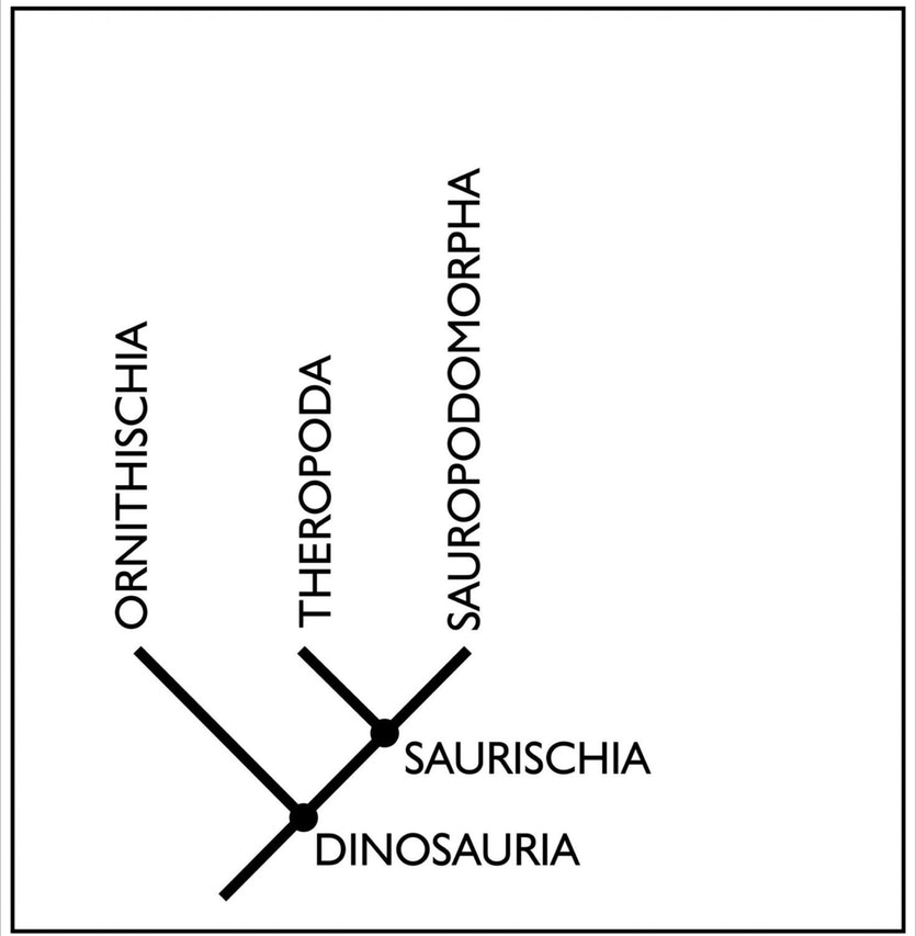 The old dino family tree structure image eurekalert science news