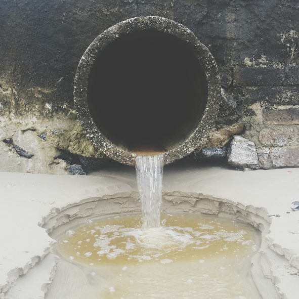 sewage pipes could be the canaruy in the coalmine.