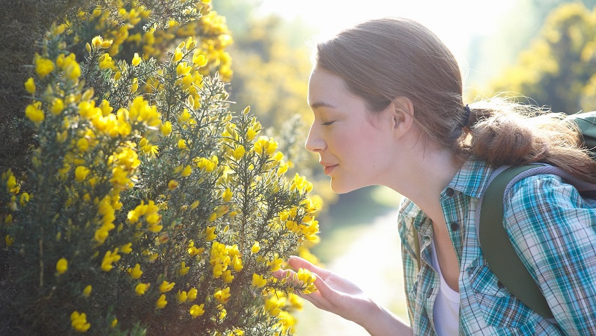 Can people develop a sense of smell? New research suggests it's an idea worth exploring.