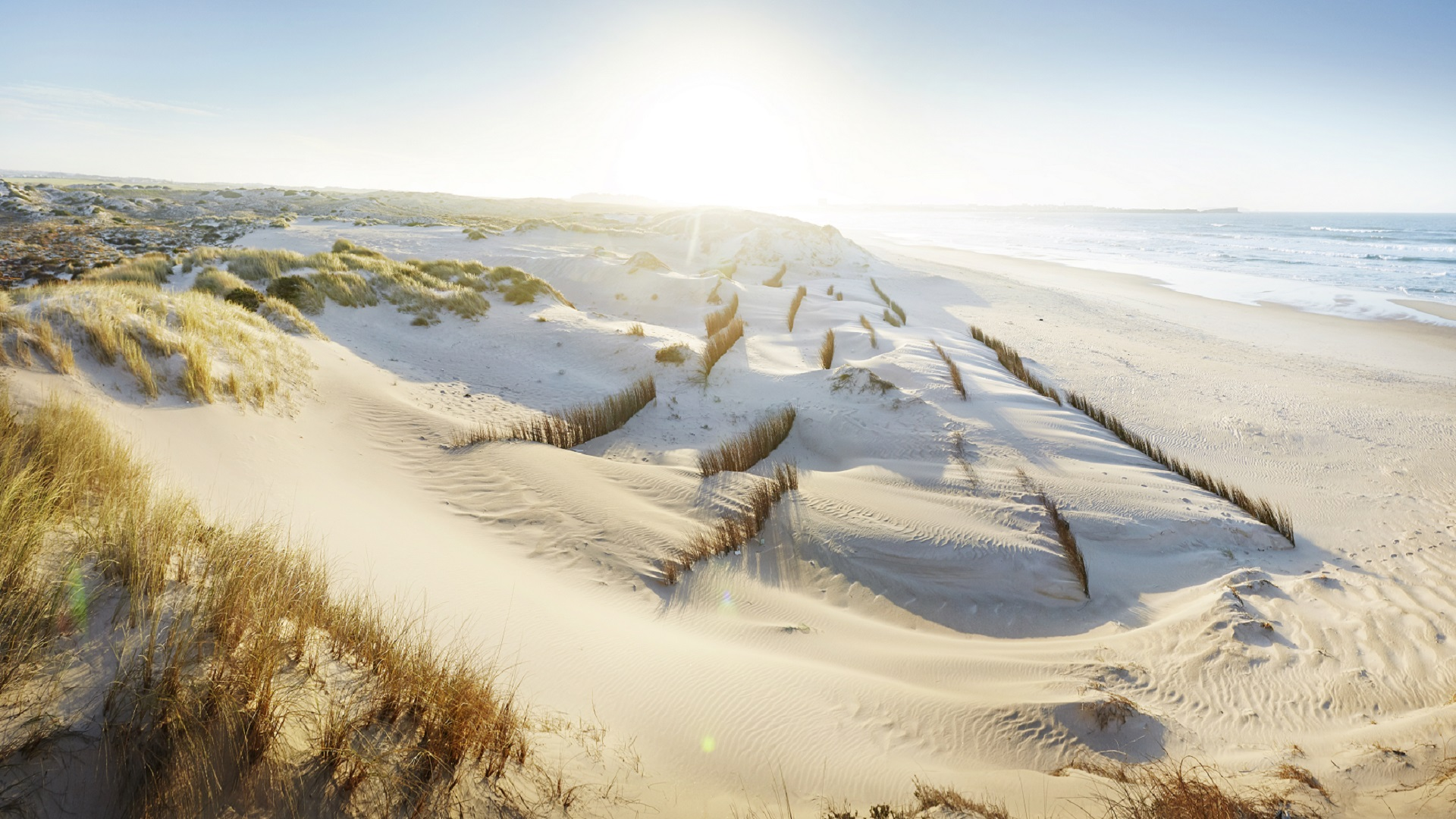 Dunes pace themselves to maximise separation