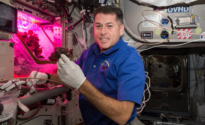 Astronaut Shane Kimbrough in front of the 'Veggie' chamber on the ISS in November 2016. Credit: NASA