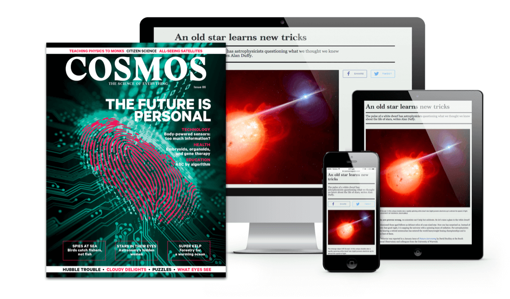 Issue 86 - The Future Is Personal