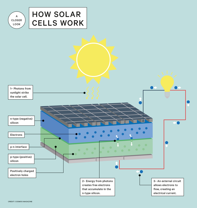 How Solar Cells Turn Sunlight Into Electricity Cosmos Magazine