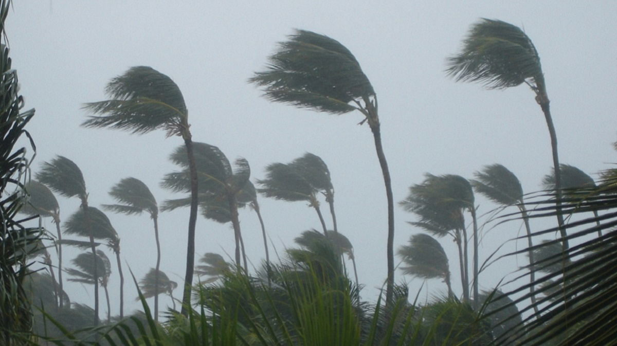 Global Warming Affects Tropical Cyclone Patterns Cosmos Magazine
