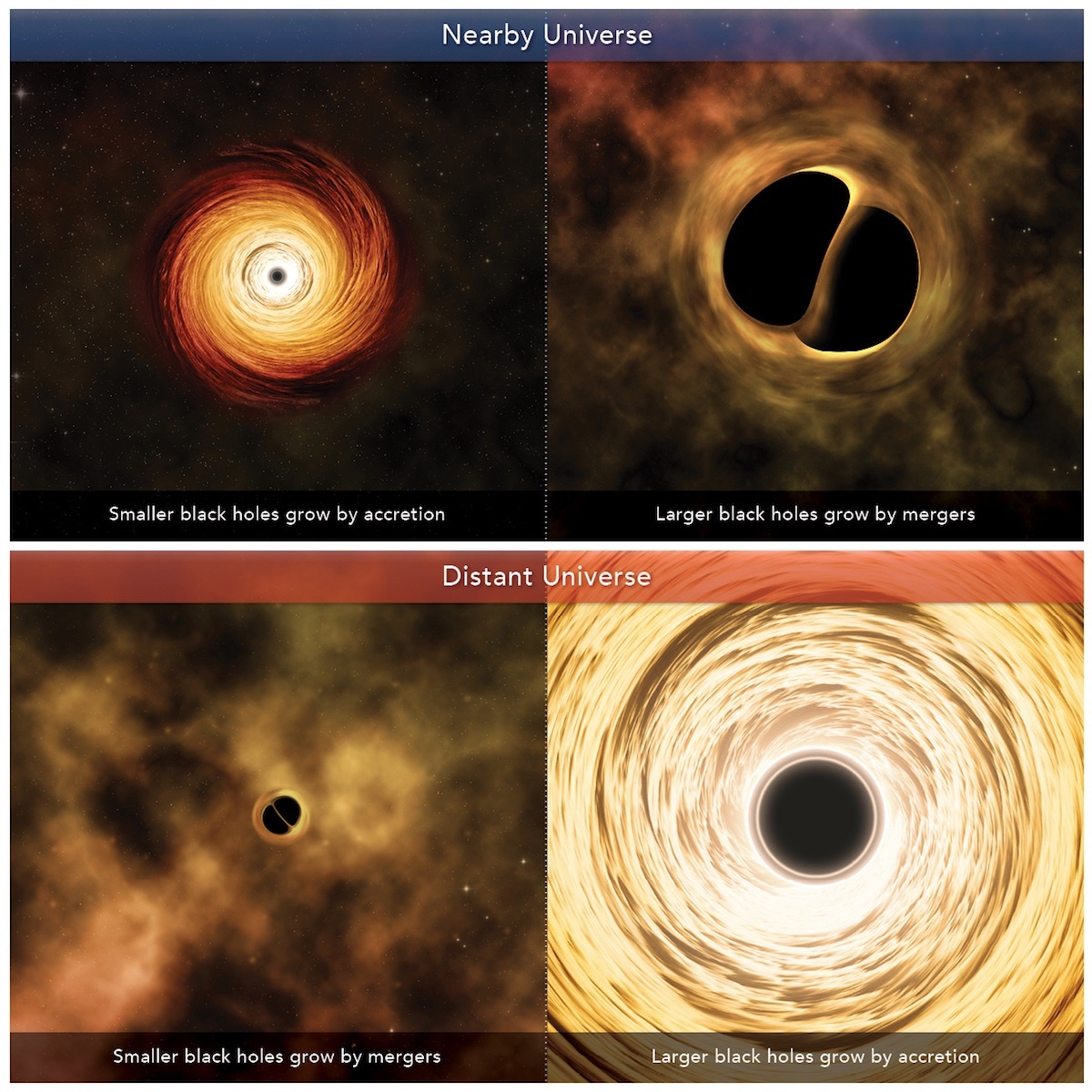 black hole growth_black holes