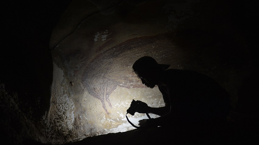 Oldest cave painting of animals found in indonesia
