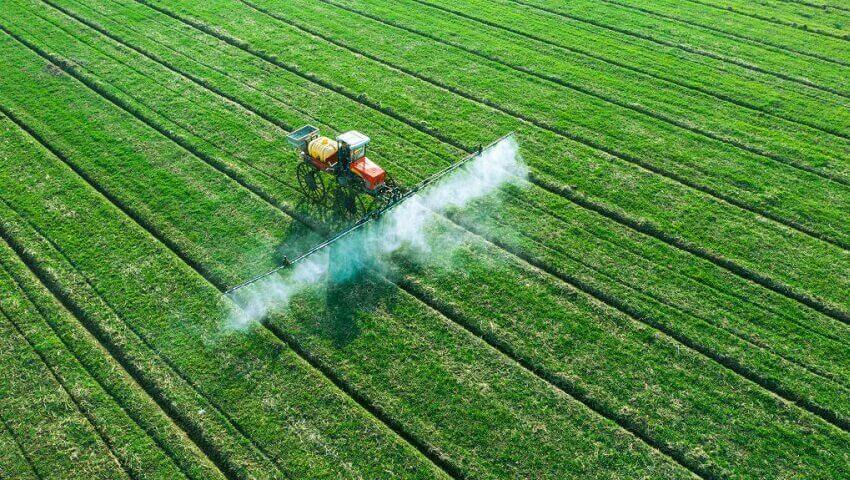Less carbon = greater food cost? - Cosmos Magazine