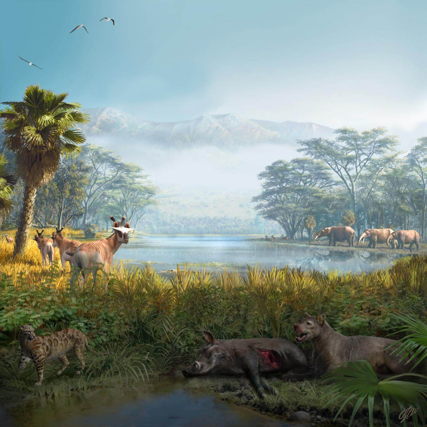 Aleoenvironmental reconstruction of the extinct mammal community recovered at the fossil site of els casots (spain), dated around 16 million years ago