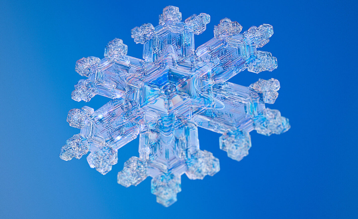 fractals in nature snowflake
