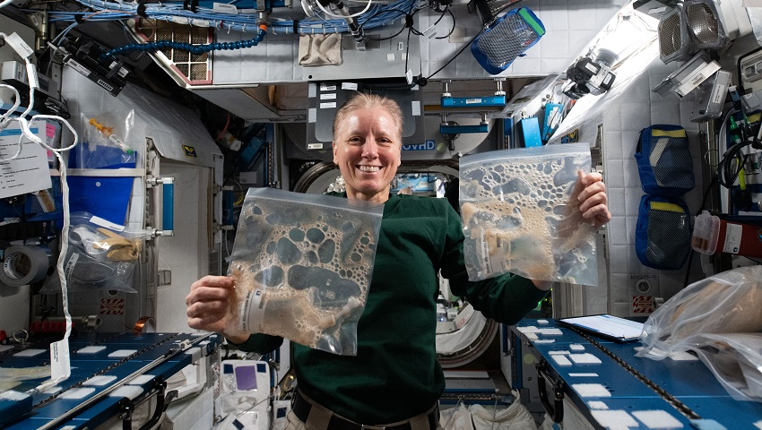 NASA astronaut and Expedition 64 Flight Engineer Shannon Walker exhibits sample bags collected from the Grape Juice Fermentation study aboard the International Space Station.