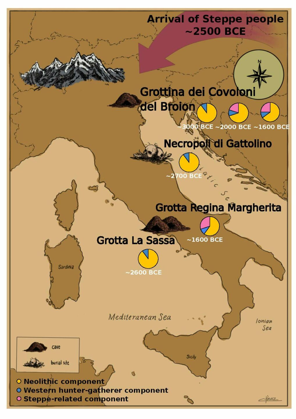 Map showing the arrival of Steepe people into ancient Italy. Pie charts show the component of DNA from different eras/geographies found in each burial site in the study. 3 pie charts have a steppe component. 3 do not.