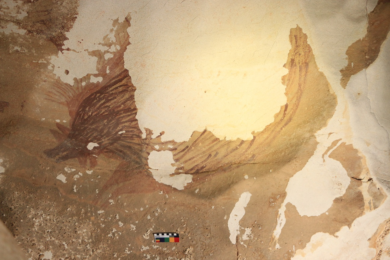 A cave wall with a pig painting. Half of it is orange and half is white, where there is no paint.