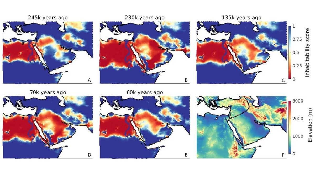 'climate windows' allowed the first human migrations