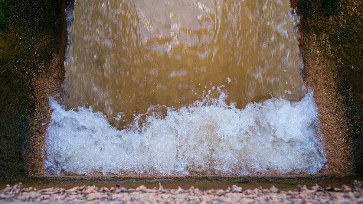 Electrici-wee? Getting energy from wastewater