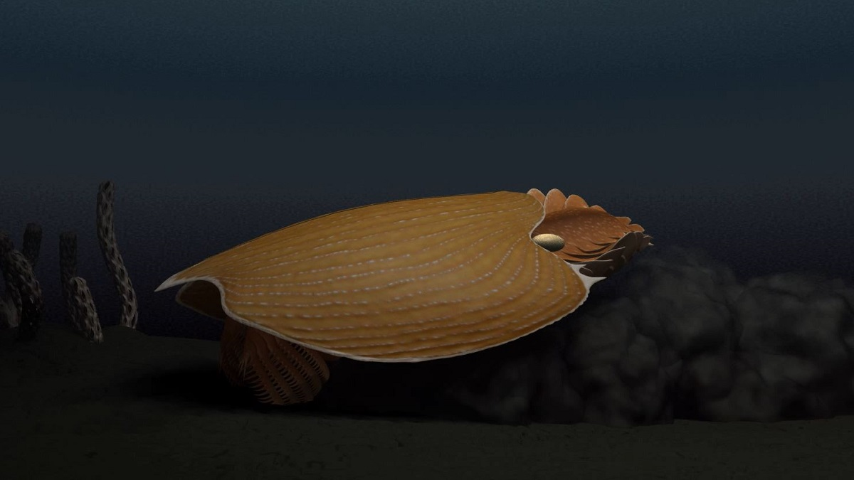 Huge new fossil species uncovered in canada