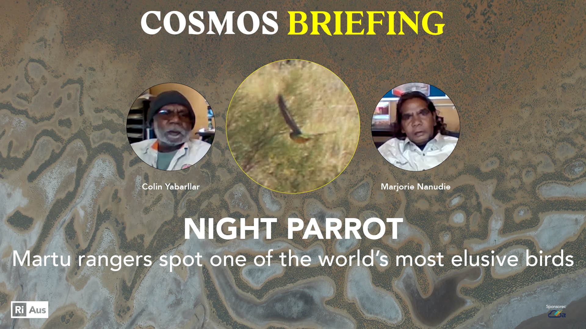 The night parrot rangers