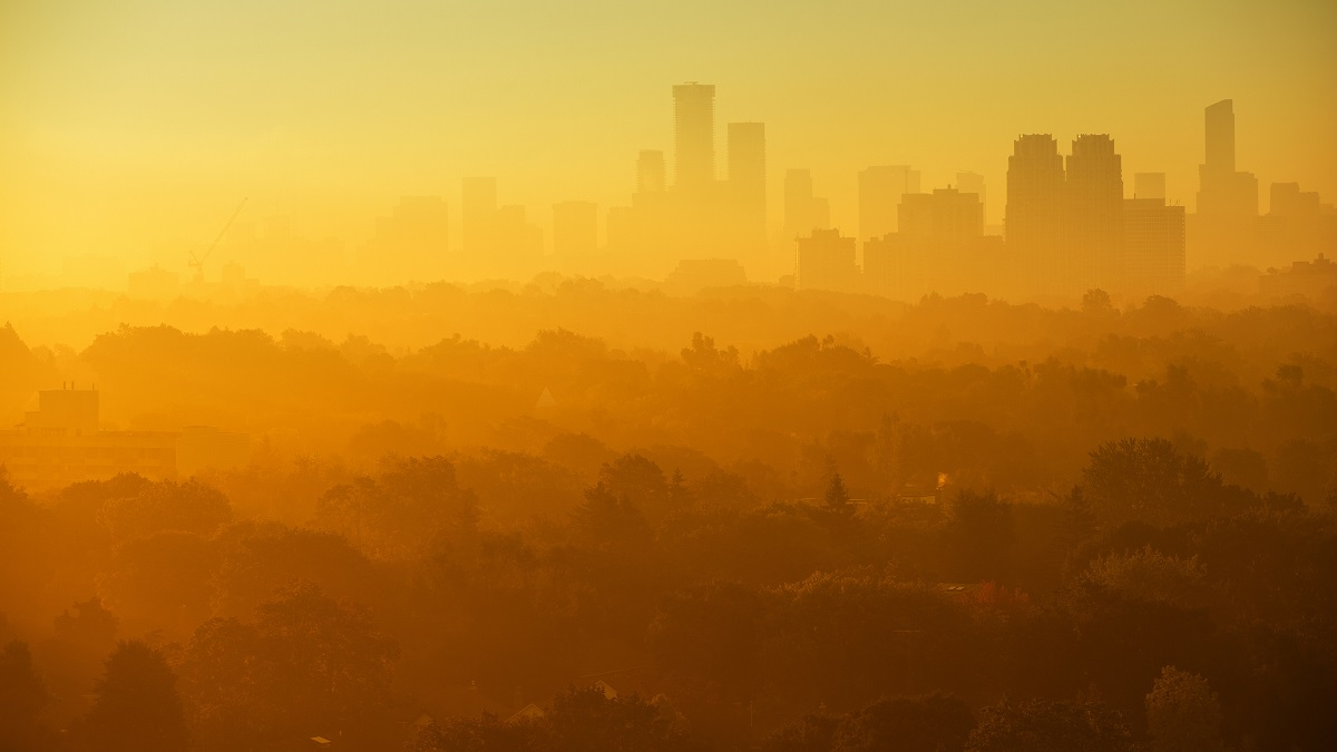 Scorching cities: deadly urban heat has tripled