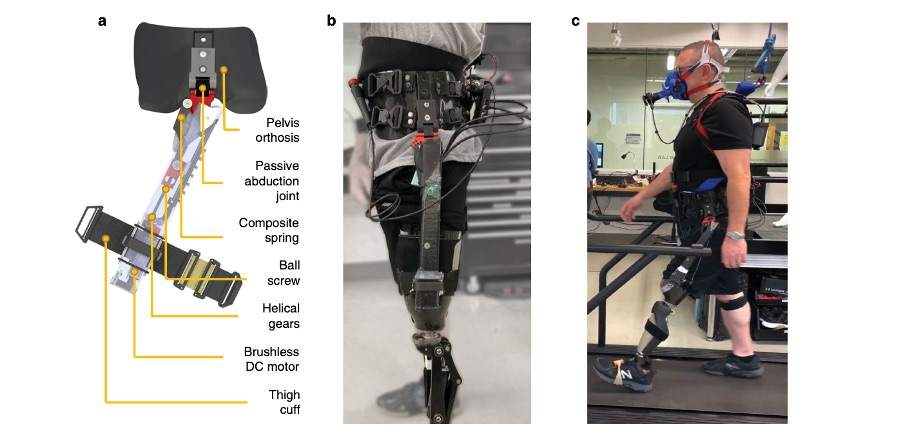 A robotic hip exoskeleton for amputees